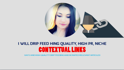 Drip Feed 6000 Niche Related Contextual Links