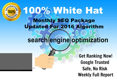 100% White Hat SEO Package - Updated For 2016 Algorithm