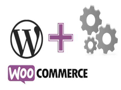 Provide 1 hour of WordPress/Woo-Commerce Update/Service/Customize