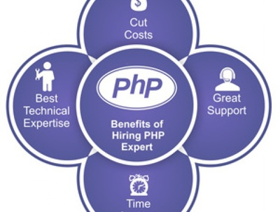 Hire Expert PHP Developer For 1 day / 8 Hours For Your Dreams Project
