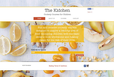 Design Your Wix.com Website for Bussiness purpose with full funcationalty