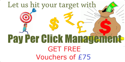 Create & Manage your Google Adwords pay per click campaigns + Free £75 Adwords Credit