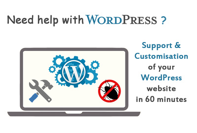 Provide you 60 minutes of support and customization for your WordPress website