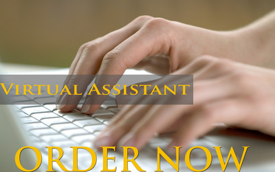 Virtual Assistant your any kind of data entry project for One hour