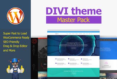 wordpress website using Divi Theme