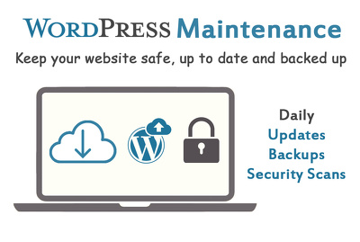 Provide you 1 month maintenance for your WordPress website
