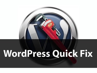 Fix any WordPress issue/bug, theme customization or add functionality
