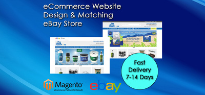 Design you a website and matching ebay store front with integration to ebay/amazon
