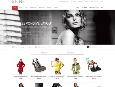 Setup E-commerce Store ,Install magento & configure your Theme