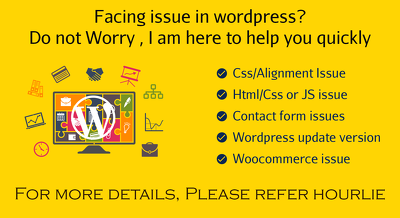 Instant Wordpress issue fix