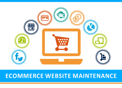 Do Maintenance  of your E-commerce Website