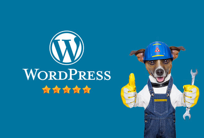 Help with any WordPress Issue or Problems