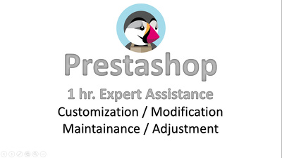 Prestashop 1 hour Assistance for customization, modification, maintenance, adjustment