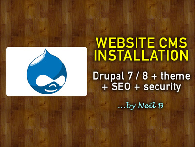Install Drupal 7 or 8, a chosen theme, SEO & security tools on your hosting/server
