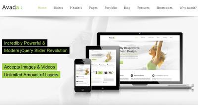 WordPress full  theme setup and customization EXACT like demo