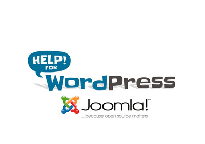 Get any WordPress/Joomla Issue/Problem fixed
