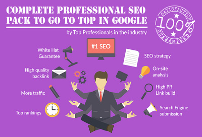 Complete Professional SEO Pack to go to top in Google - With Awesome Features