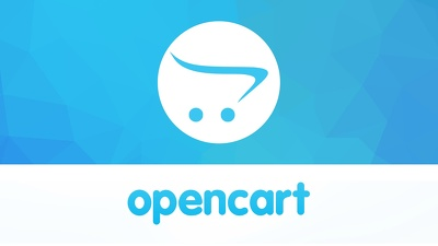Hire OpenCart Developer for 1 Hour Support