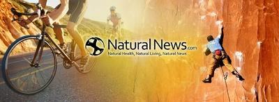 Guest Post on NaturalNews.com