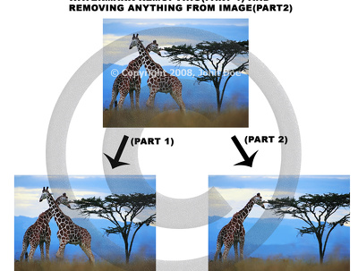 Do watermark removing work, copyright removal and deleting/removing obejct in  image