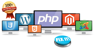 Fix any 1 issues in your websites wordpress html5 css php .net, C#,  cms