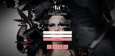 Design you a gorgeous Coming Soon/Maintenance Page