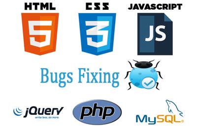 fix   PHP/ MySql / CSS / HTML / Responsive / Jquery / Javascript/ Ajax error/bugs