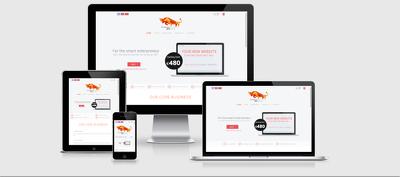 Develop 5 page responsive WordPress Website