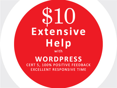 Work on your wordpress fixes/customisation for 1 hour,very cheap with high quality