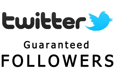 Add 1000 real Twitter Follower, Pinterest Repins, G+ Reshare Increase your SEO