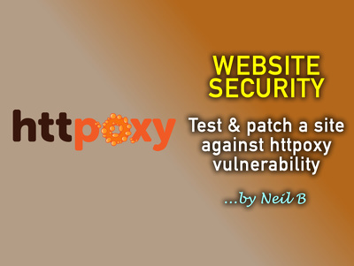 Test and patch your website / server against the httpoxy security vulnerability