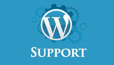 Provide wordpress support of 1 hour