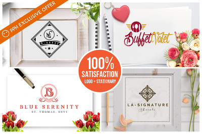 Premium Logo Design + Stationary + favicon + Font + Source files