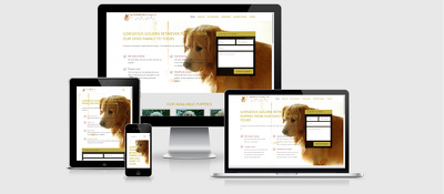 Develop Secure, Responsive, WordPress/Woo Commerce website