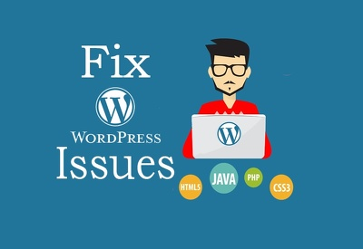 improve or fix or your wordpress website including WPMUDEV