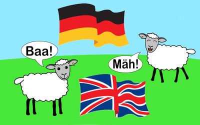 Translate 300 words English to German
