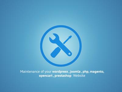 Maintenance of your wordpress , joomla , php, magento, opencart website 1 hour