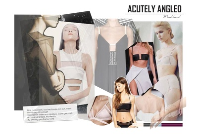 Create a mood board for your lingerie/ intimate apparel collection