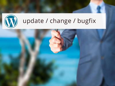 Provide 1h update, customization,  changes, bug / issue / error fix on WordPress