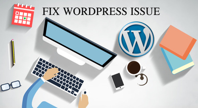 Fix wordpress issues you have quickly