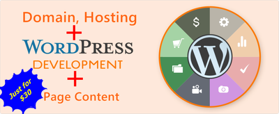 Develop WordPress business website(domain+host) & create pages+page contents/articles