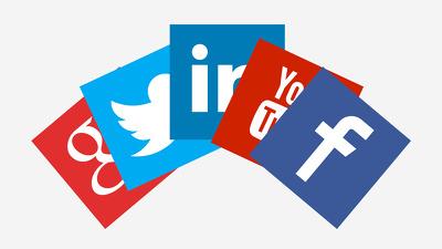 Send a Social Media Marketing Plan Step by Step Blueprint