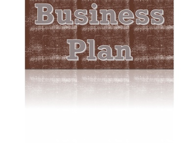 Write business plan for your business in 1 week with unlimited revisions