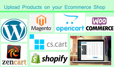 Upload up to 100 products on your Ecommerce Shop
