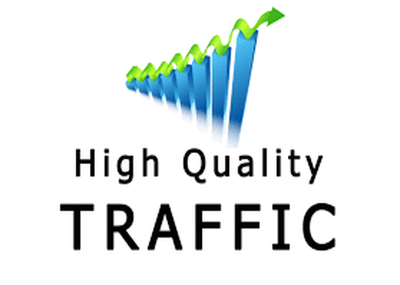 Send real human traffic to your website from 10 000 unique visitors