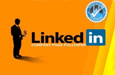 500 LinkedIn Profile/Company Page Followers or Google+ Followers
