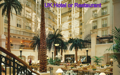 Find 500 Active UK business leads of Hotel or Restaurant details