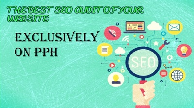 Do complete SEO audit of your website that no one else can