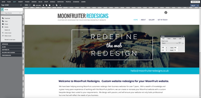 Review your Moonfruit website and send suggestions for improvement