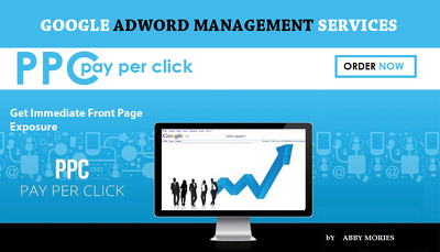 Setup AdWords Campaign For Your Business